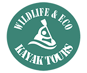 Wildlife & Eco Kayak Tours